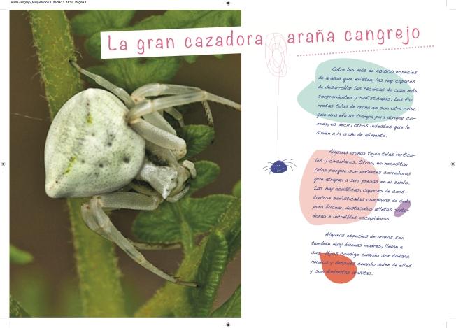 araña cangrejo_Maquetación 1